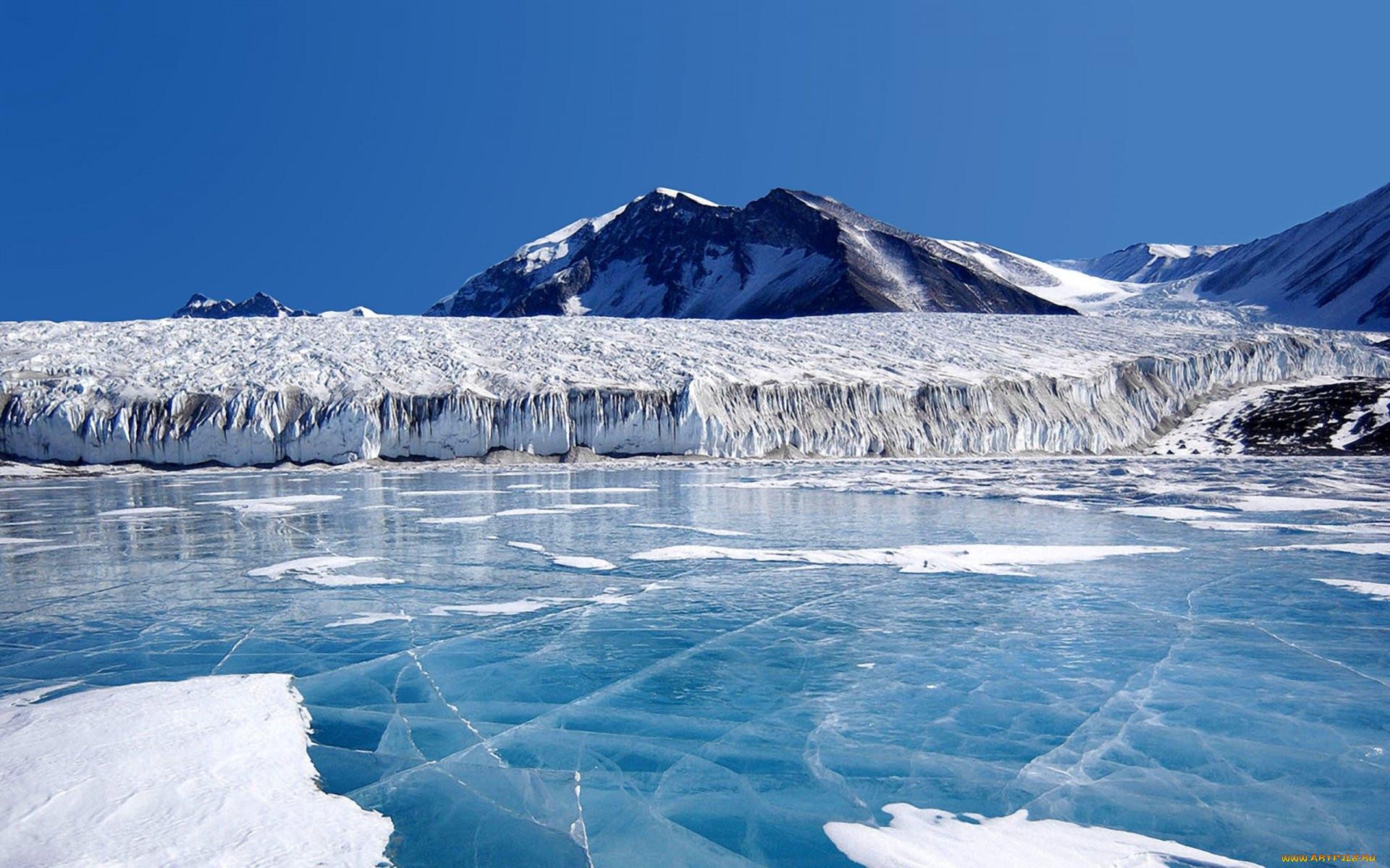 Картинка ледники арктики